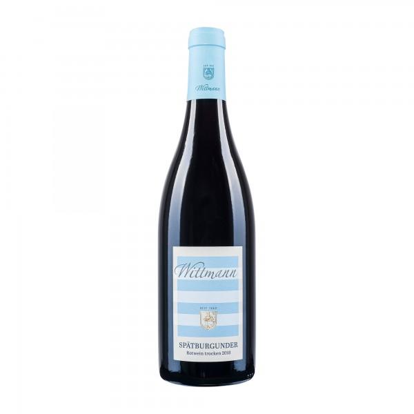 Weingut Wittmann   Spätburgunder   2018 [BIO]